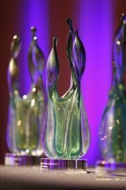 The awards vase would look great in your office!